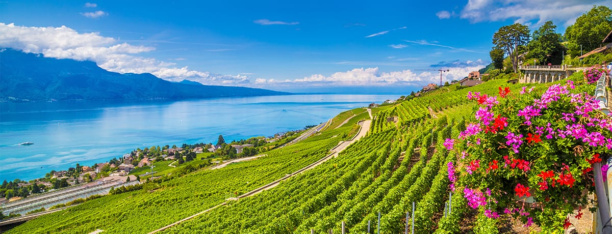 Nos hôtels sur la route des vins dans la vallée du Rhône