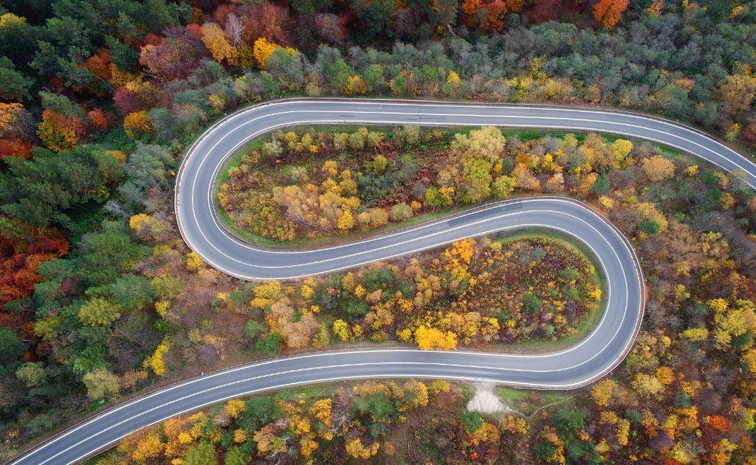 nature d'automne