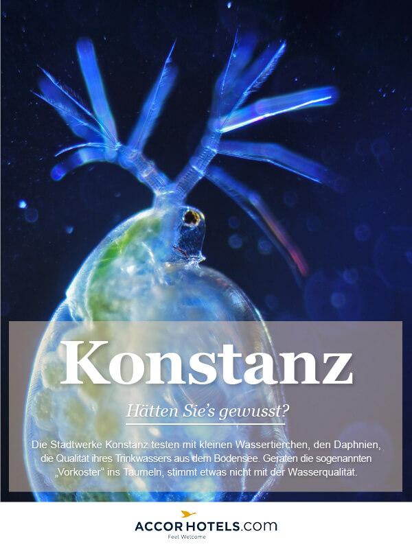 Infografik AccorHotels Konstanz
