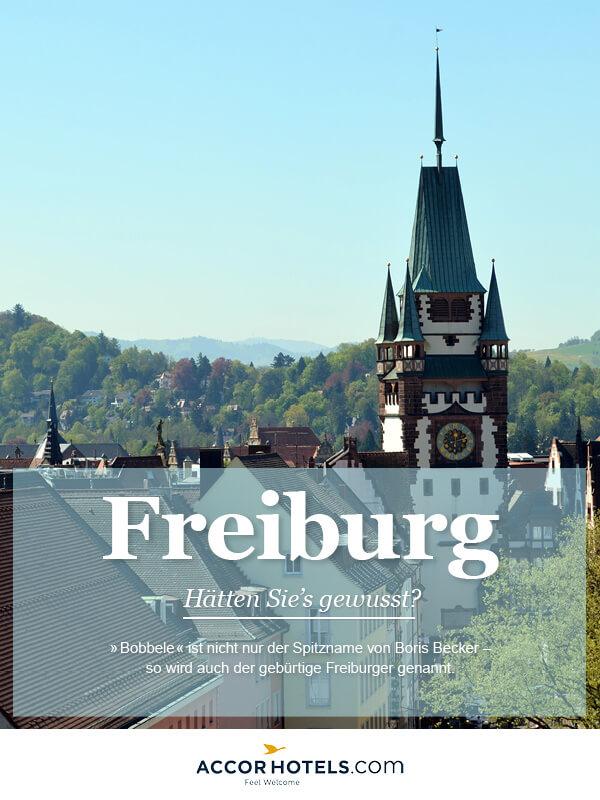 Infografik AccorHotels Freiburg