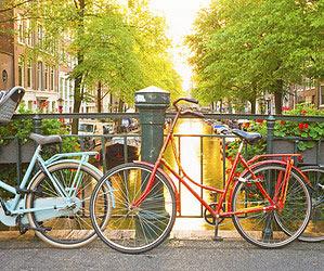 amsterdam bar brun