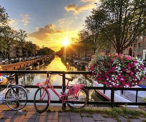 Springtime in Amsterdam: tulip season