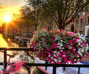 Amsterdam in 48 uur