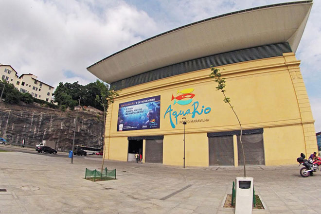 AquaRio, o novo ponto turístico do Rio (Foto: Clarice Tenório Barretto)