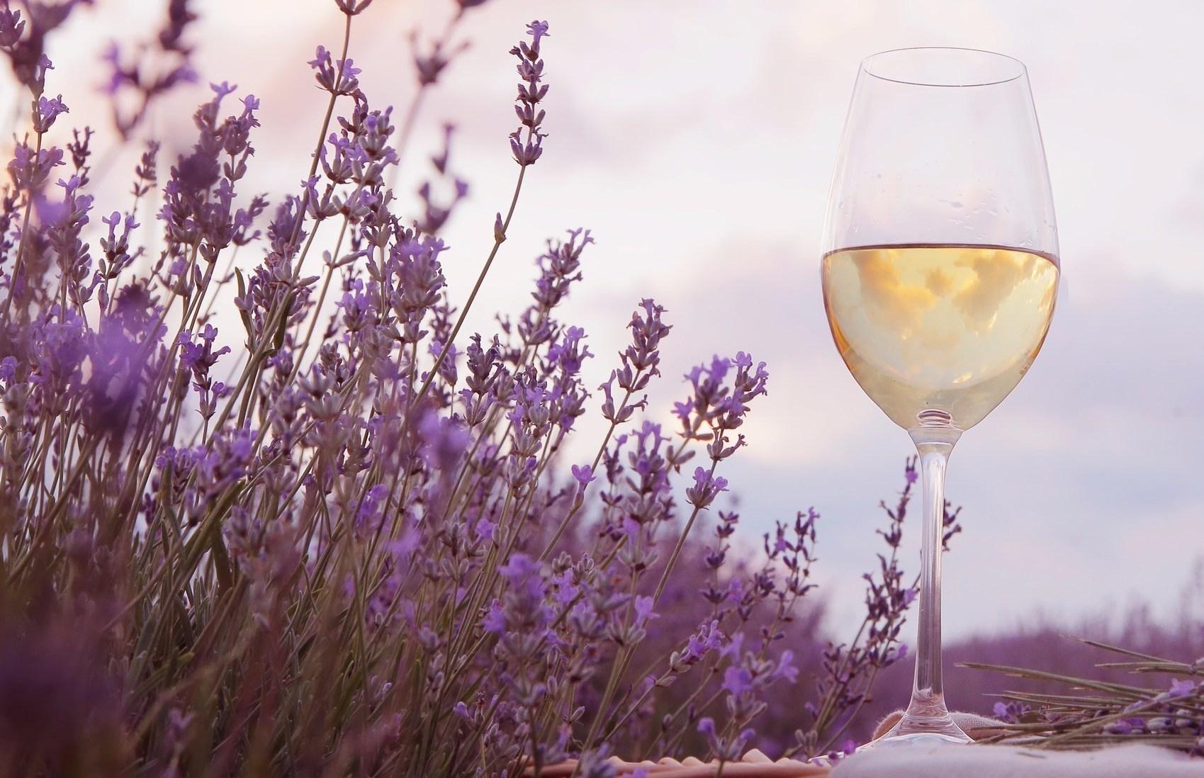 Vin avignonais