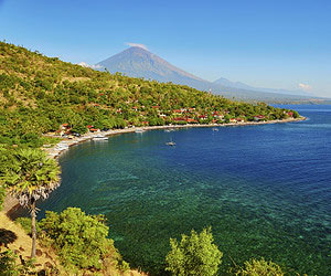 Dive into the heart of Bali's coral reef
