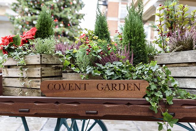 london garden