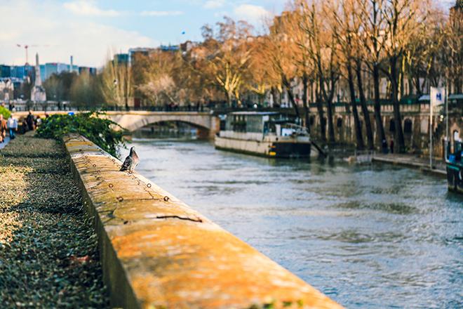 paris weather tourism
