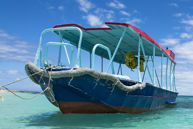 Fiji Day Trips