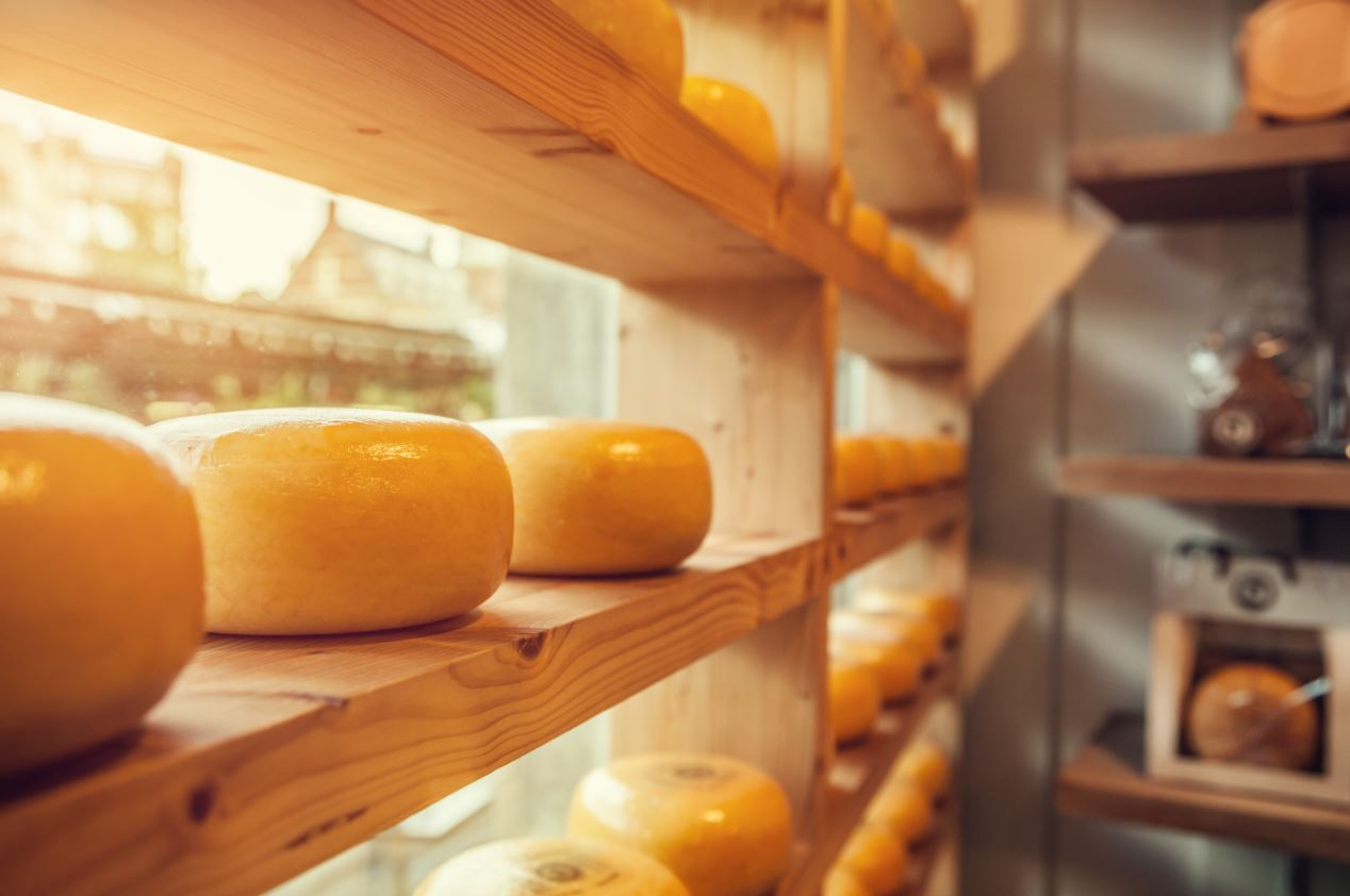 fromage d'amsterdam