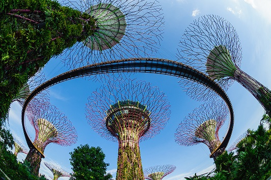 Gardens by the Bay, Singapore Tourism Board