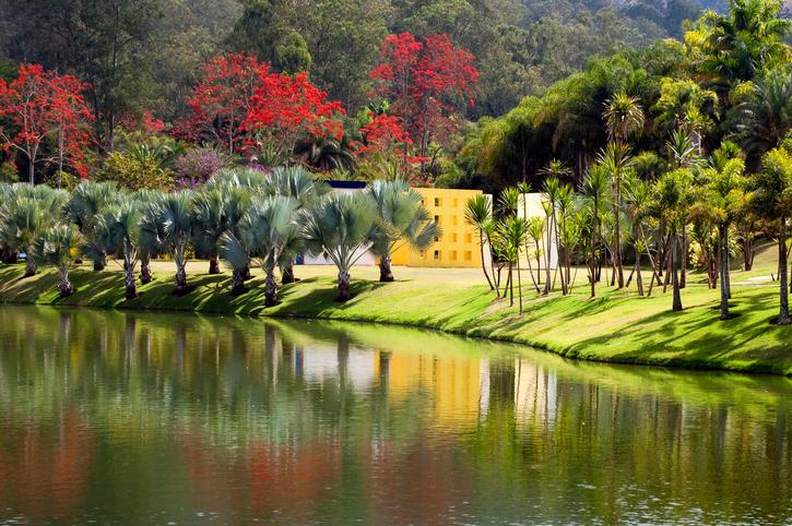 Obra de Hélio Oiticica no Jardim