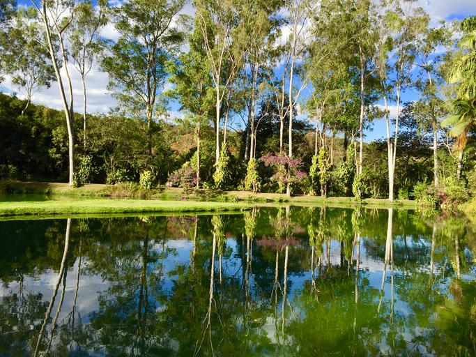 Beleza e diversidade nos jardins