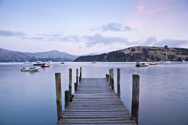 Akaroa Harbour day trip