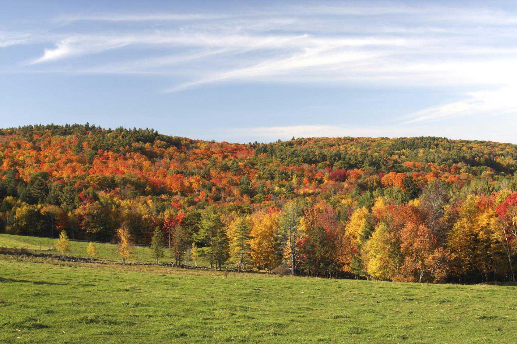 Fotografar uma paisagem colorida