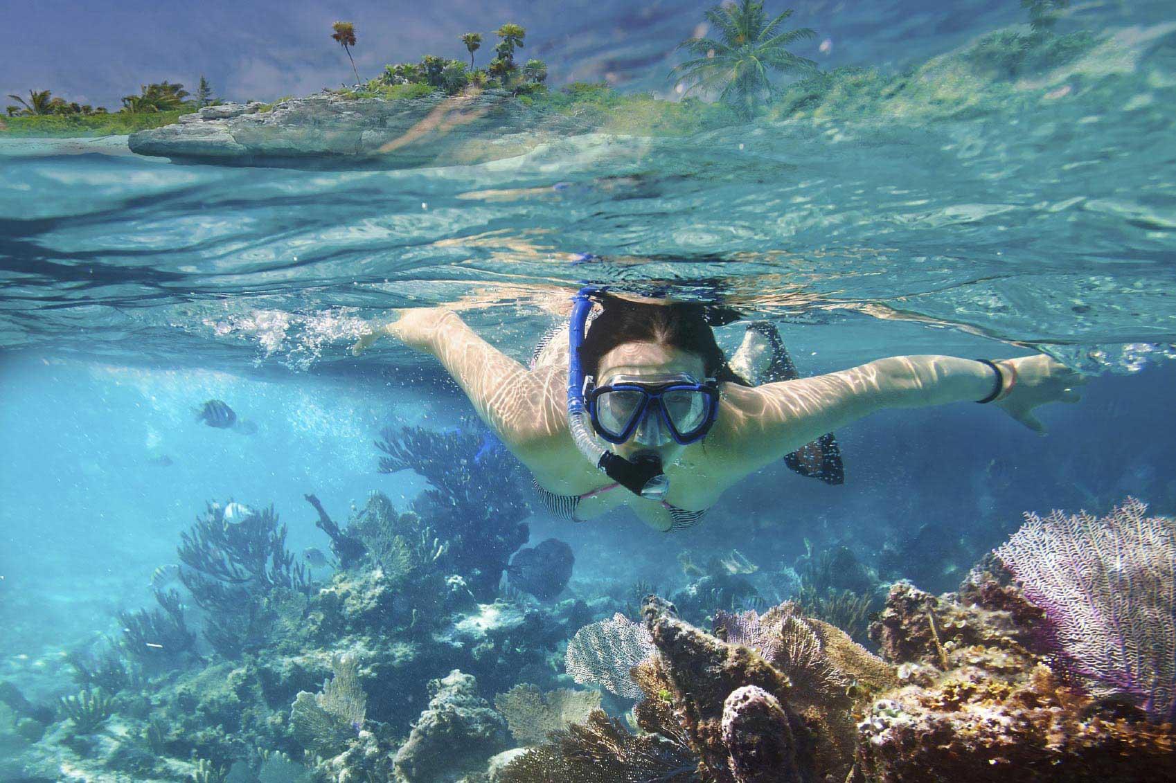 Faire de la plongée sous-marine