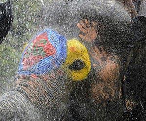 Um dia regado no festival de Songkran