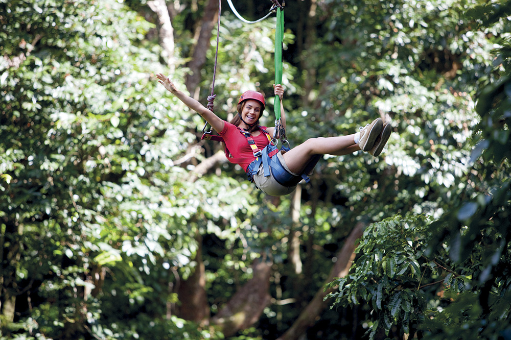 Jungle surfing canopy, Tourism Port Douglas and Daintree