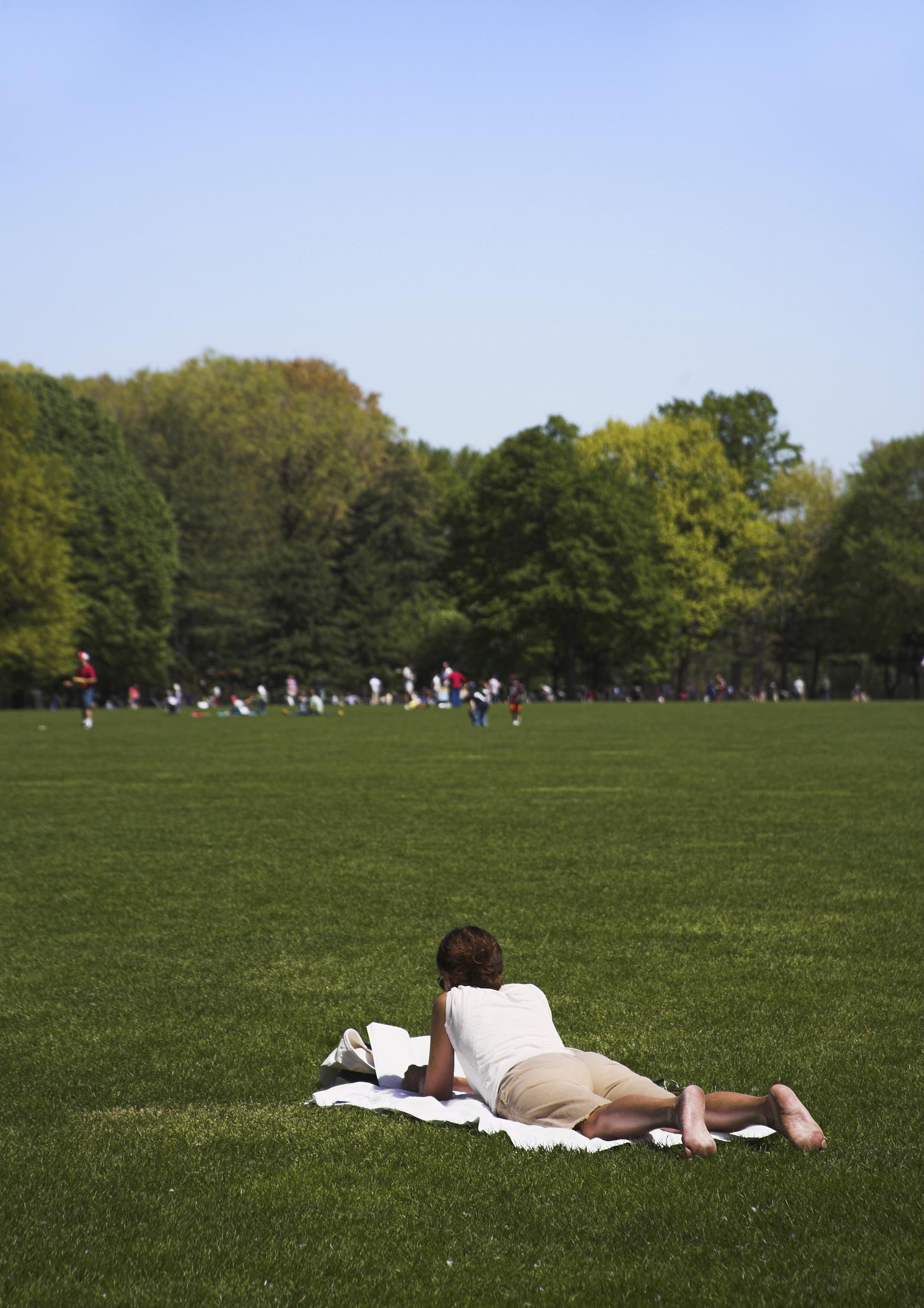 central park in summer