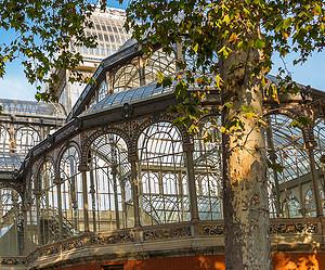 Exposiciones y espectáculos de visita obligatoria en Madrid