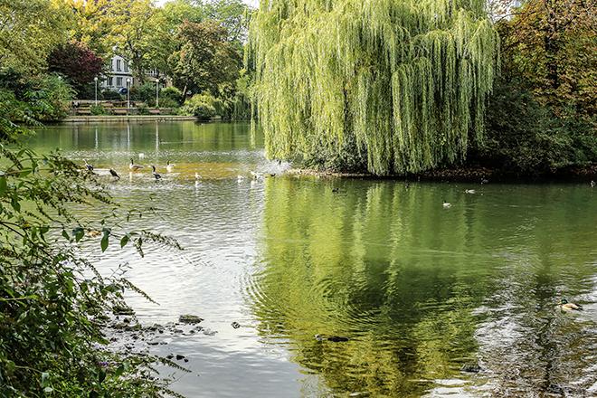 Parc urbain Hofgarten