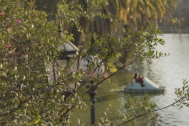 Pedalinho no Parque Rodó