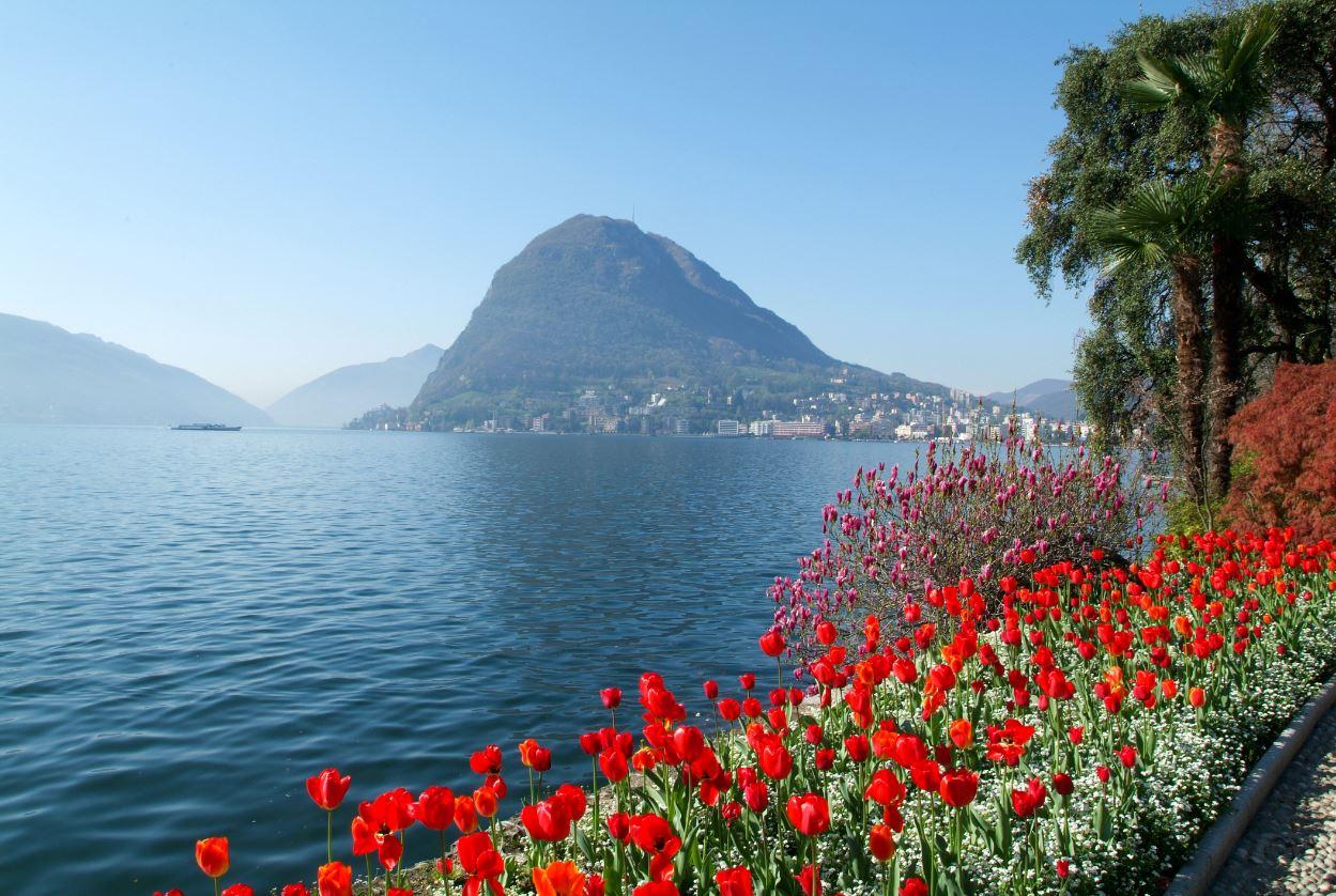 Lugano treasure