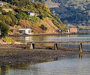 Christchurch to Akaroa day trip