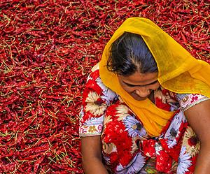 Séjour gastronomique : un tour du monde des épices à deux