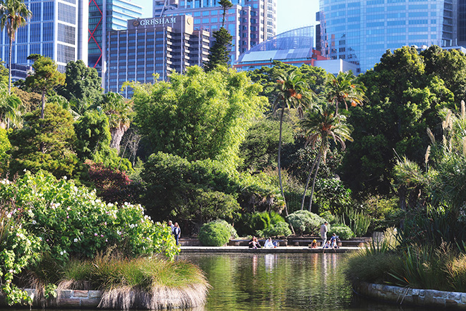 The Sydney Botanic Gardens make for a great picnic spot, or the perfect spot to escape with a good book. Credit: Tourism Australia
