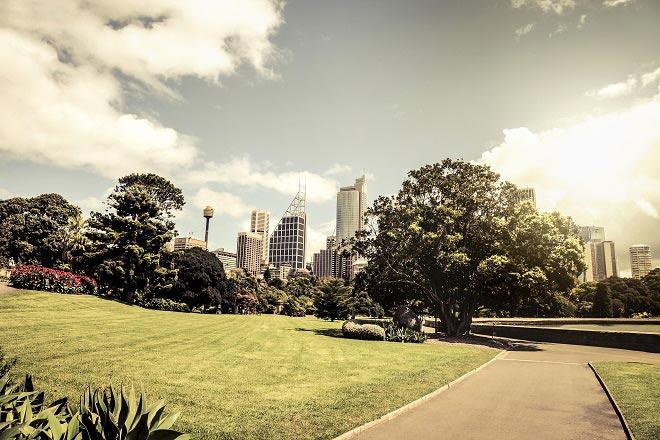 königlichen botanischen Gartens