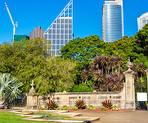 5  Sydney Parks and Gardens to Add to your Itinerary
