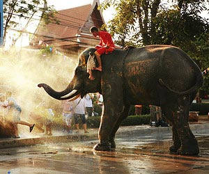A wet'n'wild day at the Songkran Festival
