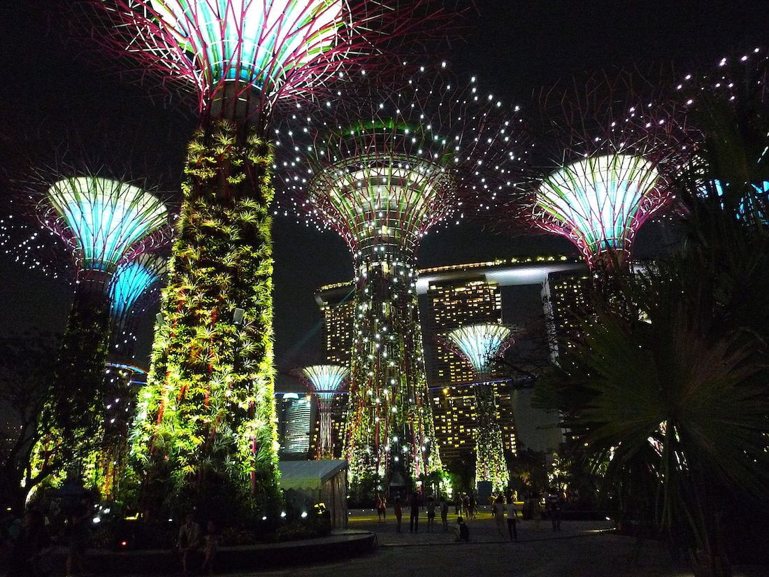 The Supertree Grove by night. Source: Tee Eric
