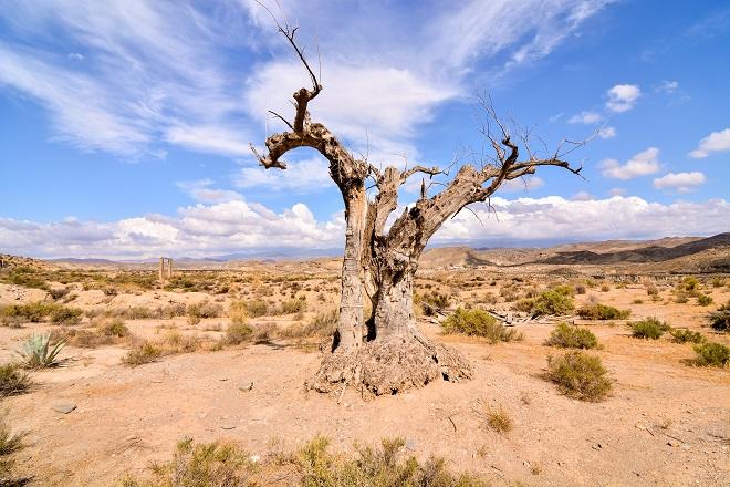Deserto di Tabernas
