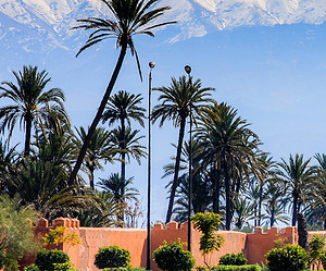 The top 10 unusual places to visit in Marrakesh
