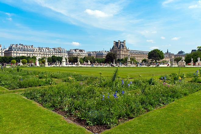 tuileries-garden-city-center-paris