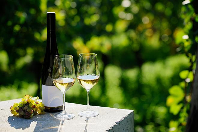 Taças de vinho e vinhedo ao fundo (Foto: Getty Images)