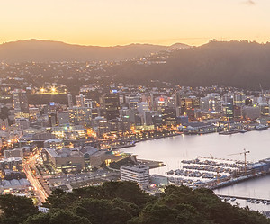 Wellington's Best Coffee Haunts