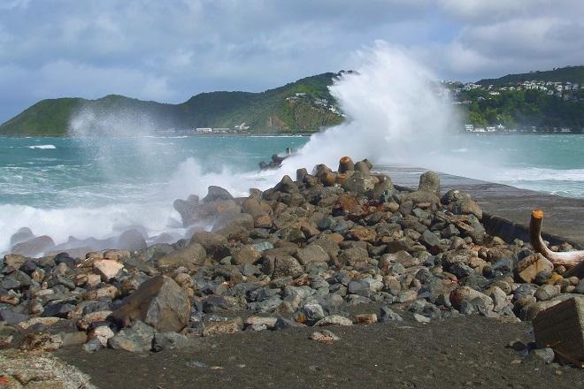 Island Bay Wellington