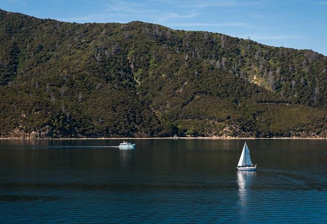Wellington South Coast
