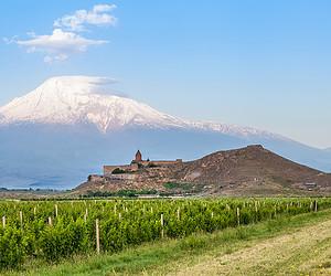 Ереванские винные дни