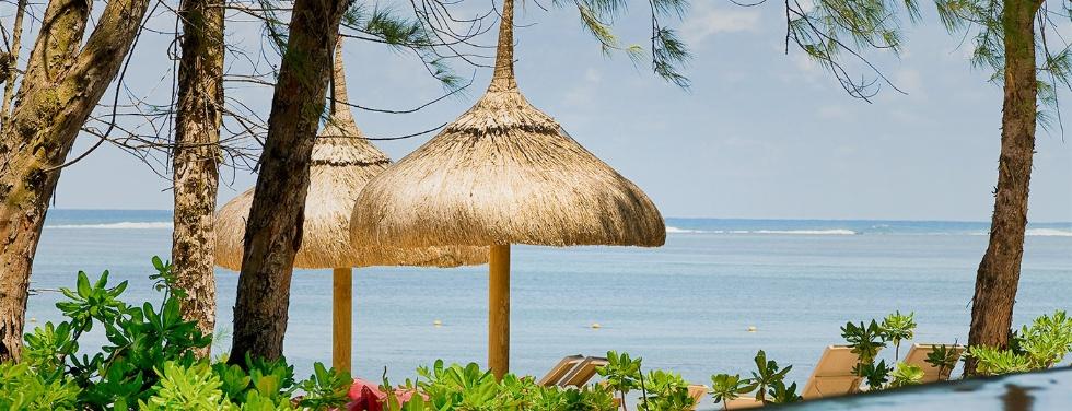 Dating plus Mauritius