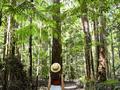Fraser Island hotel - Fraser Coast, Capricorn And Mackay