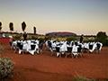 Yulara hotel - Central Australia